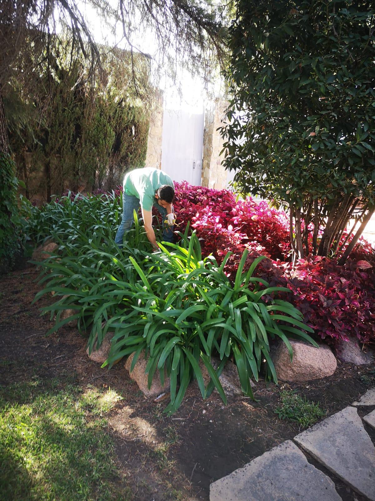 jardinerocordoba